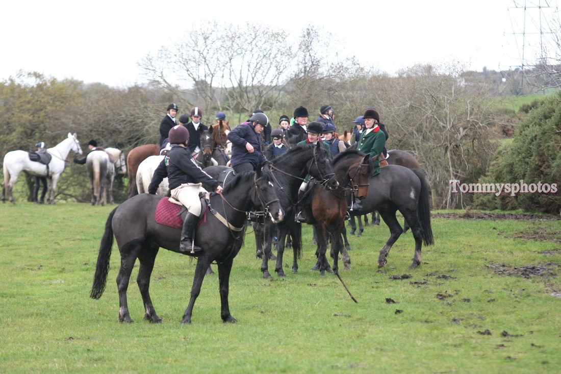 Carlow Farmers - Tommy's Photo's Gymkhana Wexford