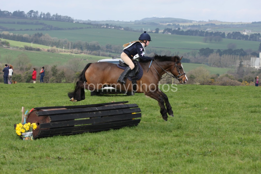 Kilmoganny Hunter trials 2015 - Tommy's Photo's Gymkhana Wexford